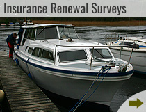 Insurance Renewal Surveys