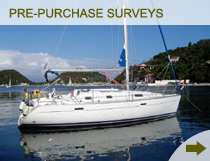 Pre-Purchase Surveys